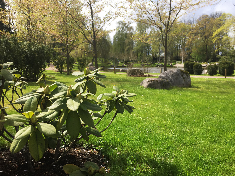 Jaapani aed