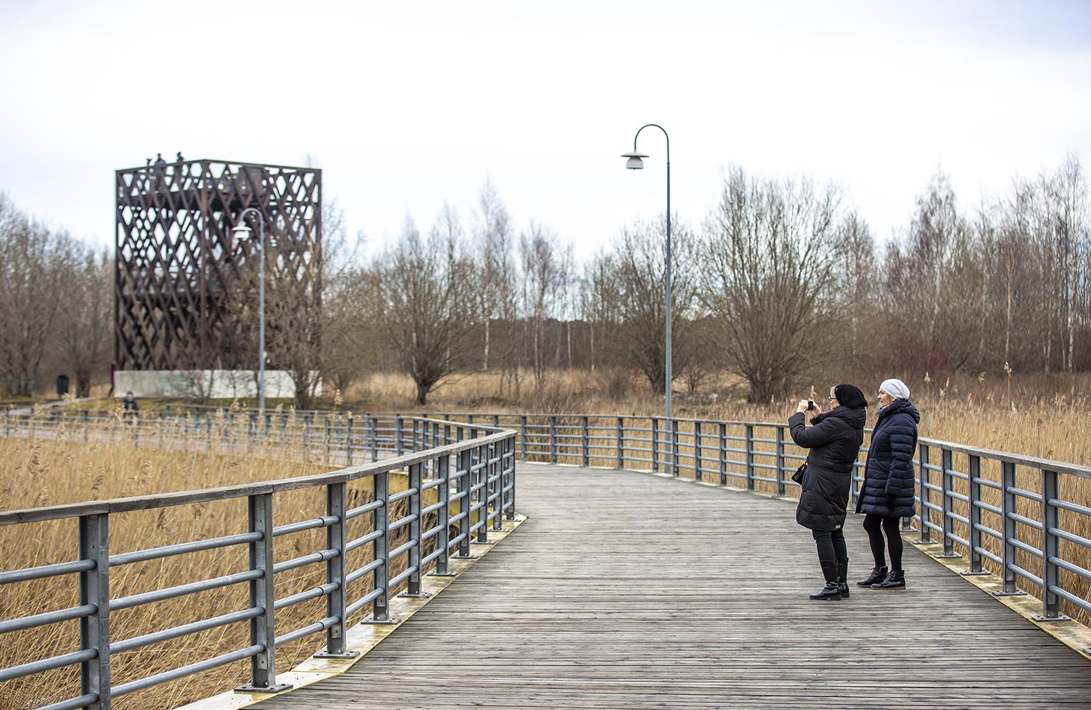 Tallinnan Stroomin rantaan valmistui viime keväänä uusi lintutorni.