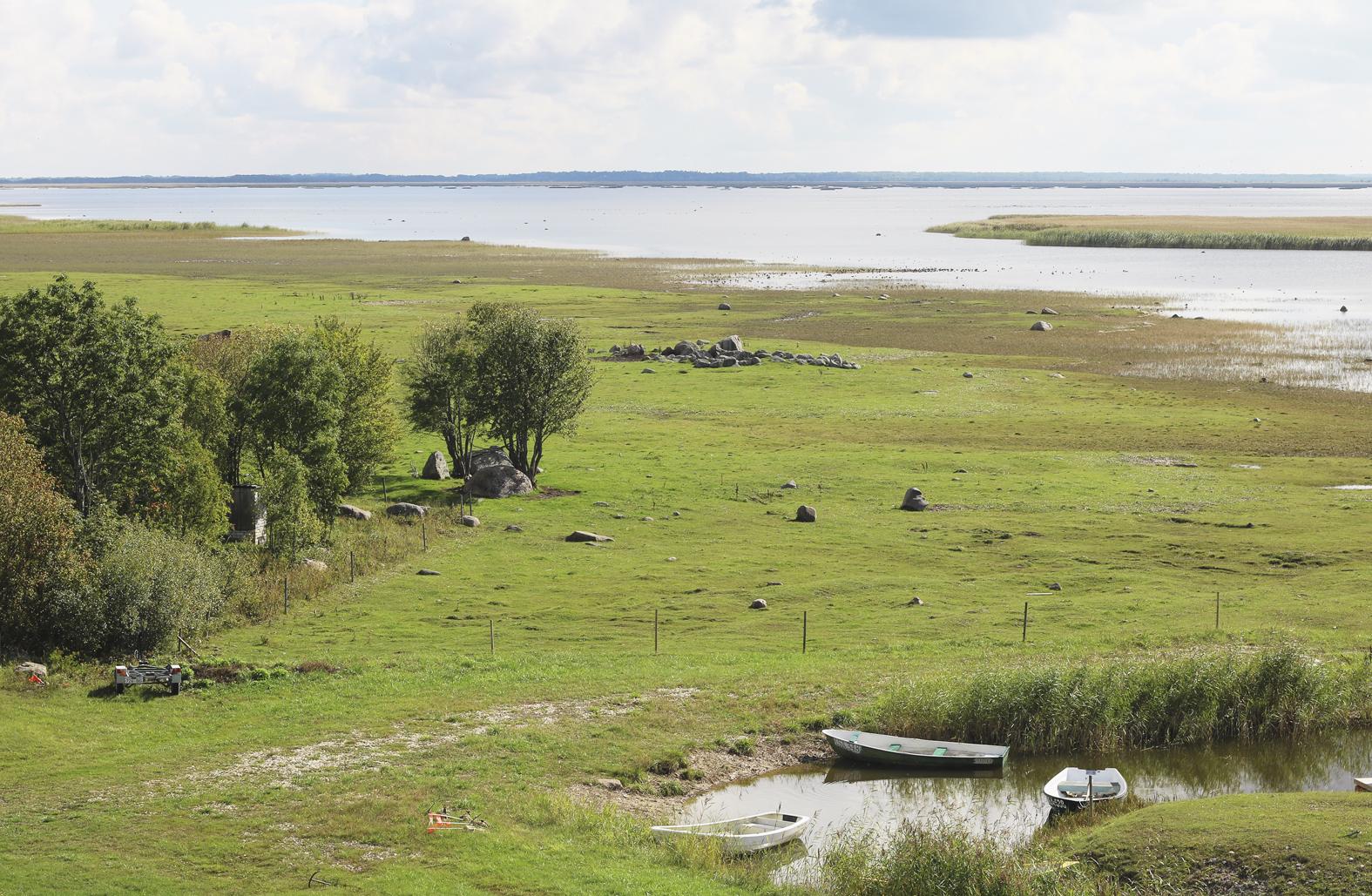 Matsalun Haeska on keväisin ja syksyisin yksi suosituimmista lintupaikoista Virossa.