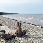 Toilan upea ranta on täynnä pieniä soikionmuotoisia kiviä.