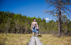 Luontopäivänä 18.8. pääsee oppaan johdolla tutustumaan Viron metsähallituksen luontopolkuihin.