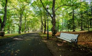 Lokakuussa puisto on kauneimmillaan, kun lehtipuut värjäävät laakson keltaisen ja punaisen eri sävyihin.