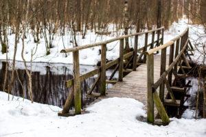 Pääskülan metsissä kulkee kaksi luontoreittiä, joista toinen sopii myös liikuntarajoitteisille.