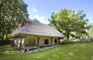 Ruokokaton rakentaminen on mestarien hommaa. Hyvin tehty katto saattaa kestää jopa 80 vuotta.