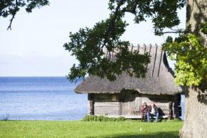Viron ulkomuseossa voi viettää päivää kauniissa maisemissa.