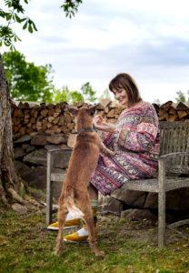 Kiviaidat, halkopinot ja upeat vanhat puut ympäröivät Sikke Sumarin Nami Namasten tilan pihaa. Seuraa pitää koira Flynn.