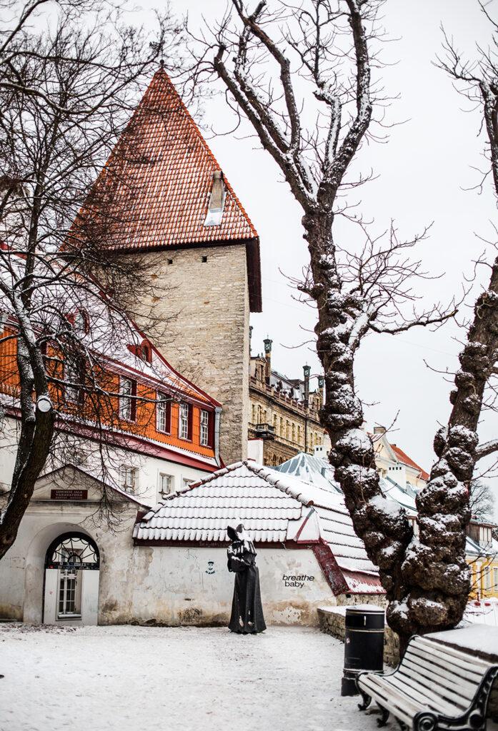 Tanskan lipun, Dannebrogin, kerrotaan laskeutuneen taivaasta Tallinnaan vuonna 1219. Tanskan kuninkaan puutarha Vanhassakaupungissa muistuttaa legendasta.