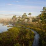 Soomaan kansallispuisto